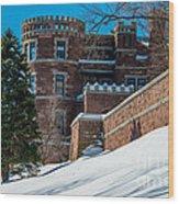 Wintery Lambert Castle Wood Print