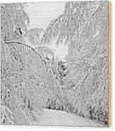Wintry Road Wood Print