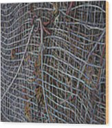 Wire Mesh Wood Print