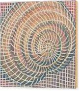 Wireframed Spiral Wood Print