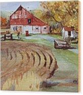 Wisconsin Barn Wood Print by Kris Parins