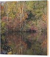 Wisconsin Beauty Wood Print