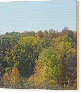 Wisconsin Colors Wood Print