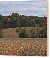 Wisconsin Fields In Late Summer Wood Print
