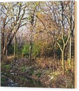 Wisconsin Scenic View Wood Print