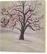 Wisconsin Winter Wood Print