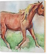 Horse Painted In Watercolor Wisdom Wood Print