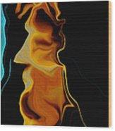 Wisdom Of Age Wood Print by David Winson