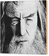 Wise Wizard Wood Print by Kayleigh Semeniuk