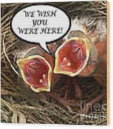 Wish You Were Here Greeting Card Wood Print