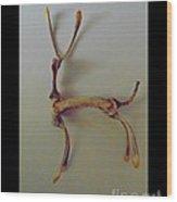Wishbones Wood Print