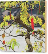 Wishing Tree At The Tomb Of Emperor Wood Print