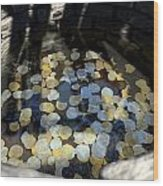 Wishing Well With Coins Perspective Wood Print