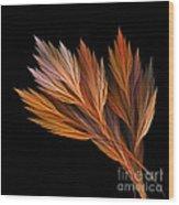 Wispy Tones Of Autumn Wood Print