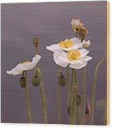Wispy White Floral Wood Print