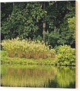 Wispy Wild Grass Reflections Wood Print