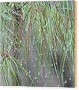 Wispy Winter Raindrops Wood Print