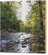 Wissahickon Creek Near Bells Mill Wood Print
