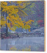 Wissahickon Morning In Autumn Wood Print