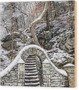 Wissahickon Steps In The Snow Wood Print