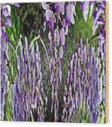 Wisteria Abstract Wood Print