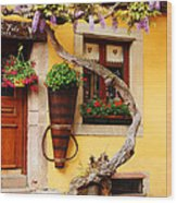 Wisteria And Yellow Wall In Alsace France Wood Print