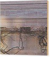 Wisteria In Winter Wood Print
