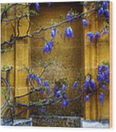 Wisteria Wall Wood Print