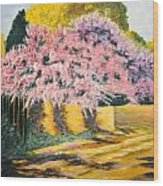 Wisterias Santa Fe New Mexico Wood Print