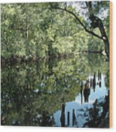 Withlacoochee River Reflections Wood Print