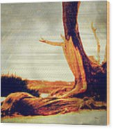 Withstanding The Storms Wood Print