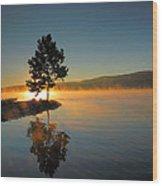 Witness To The Dawn II Wood Print