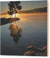 Witness To The Dawn IIi Wood Print