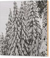 Wnter Snow At Shaver Lake Wood Print