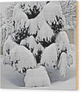 Wnter Tree 5 Wood Print