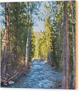 Wolf Creek Flowing Downstream  Wood Print