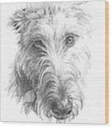 Wolf Hound Pencil Portrait Wood Print