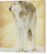 Wolf Shine Wood Print
