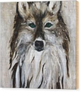 Wolf - Star Trakr Wood Print