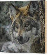 Wolf Upclose Painterly Wood Print