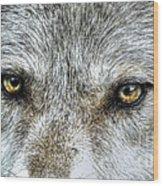 Wolf Wisdom Wood Print