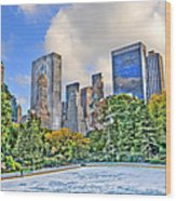 Wollman Rink In Central Park Wood Print