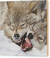 Wolves Rules Wood Print