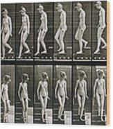Woman Descending Steps Wood Print by Eadweard Muybridge