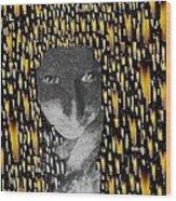 Woman In Flames Wood Print