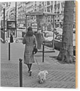 Woman In Paris Walking Dog Wood Print
