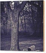 Woman Under A Tree Wood Print
