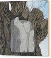 Woman Torso - Cast 1 Wood Print by Flow Fitzgerald