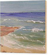 Wombarra Beach Wood Print
