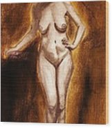 Women With Curves Are Beautiful 2 Wood Print